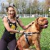 Video Caratteristiche Razza Dogue de Bordeaux